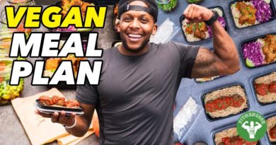 Lose Weight Market maxresdefault-390x205 My 4-Day High Protein Vegan Meal Plan