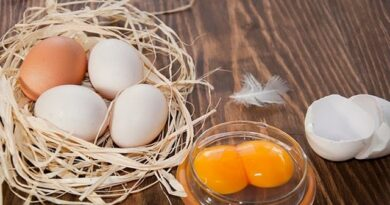 Lose Weight Market sddefault-9-390x205 Pass an EGG all over your body and watch what happens